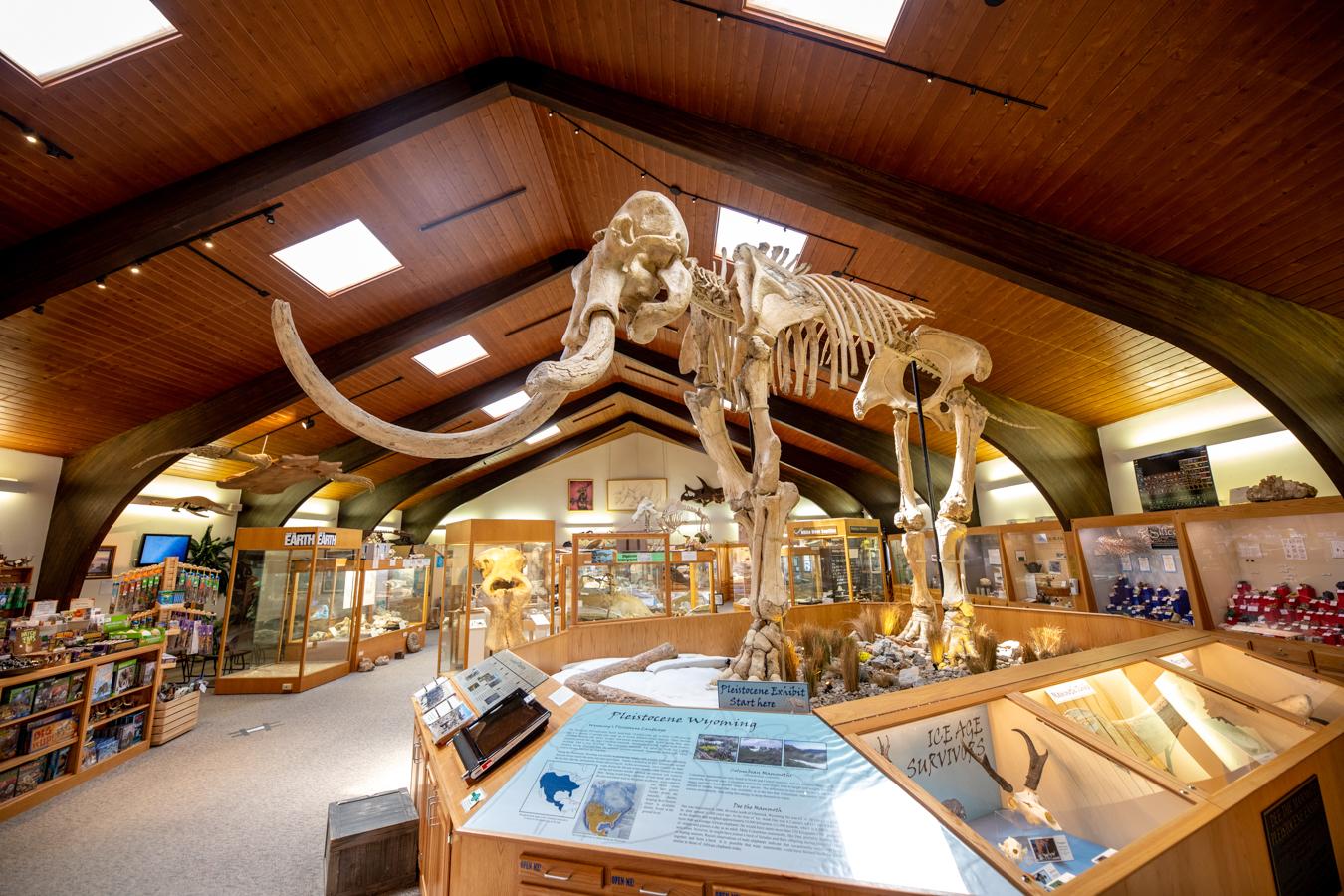 Tate Geological Museum